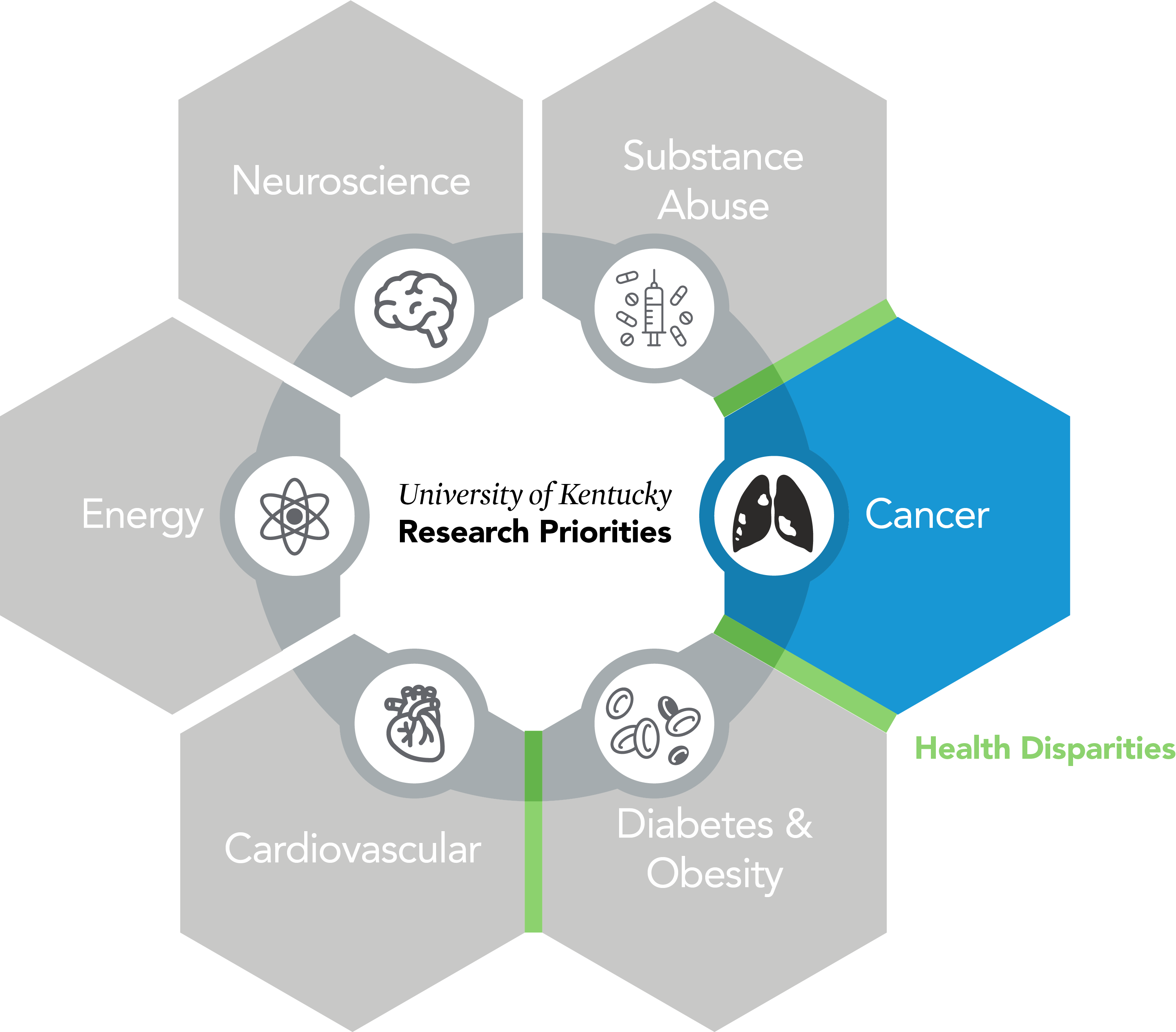 Research Priority: highlighted: Cancer; Cardiovascular, Obesity & Diabetes, Energy, Neuroscience, Substance Abuse