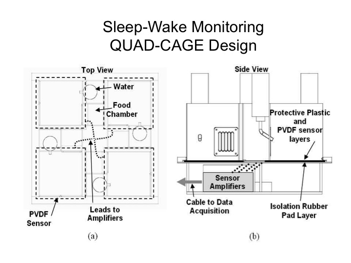 sleep-wake monitoring quad cage design