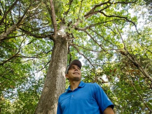 Seth DeBolt under oak tree