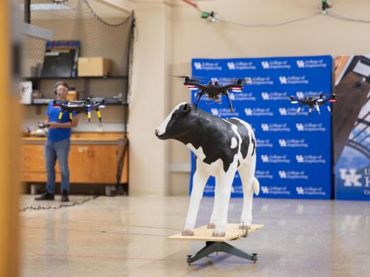 drones with calf replica