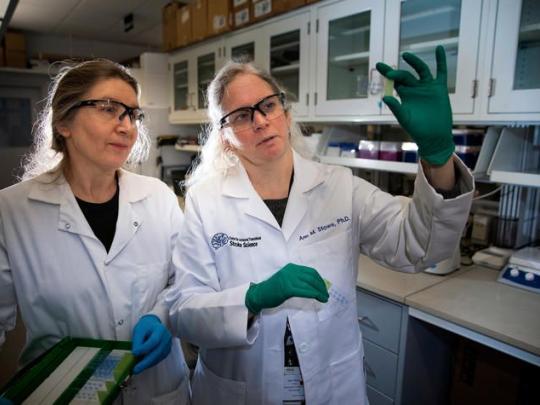 Ann Stowe in lab